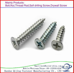 High Strength Stainless Steel Screws Self Drilling Screw/Wood Screw/Machine Screw pictures & photos