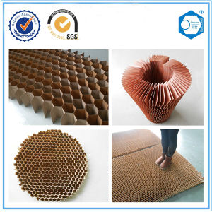 Wood Door Usage Honeycomb Paper for Door pictures & photos