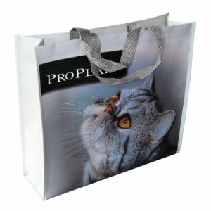 PP Woven Laminated Shopping Bag for Ladies pictures & photos