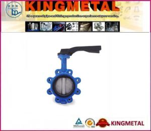 API 6D Butterfly Valve pictures & photos