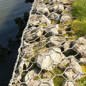 Gabion Mesh /Hexagonal Wire Mesh -Manufacturer&Exporter-Over 20 Years pictures & photos