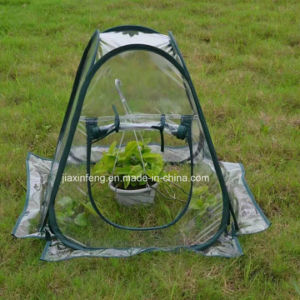 Pop up Indoor Grow Plant Tent