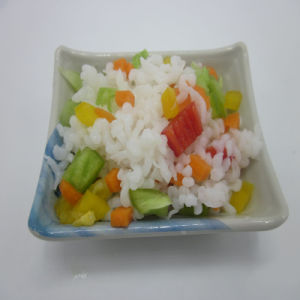 Organic Shirataki Konjac Rice with No Sugar