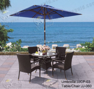 Outdoor Furniture, PE Rattan Furniture, (JJ-060TC) pictures & photos