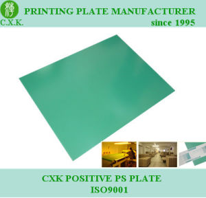 Lithographic Plate Positive PS Plate pictures & photos