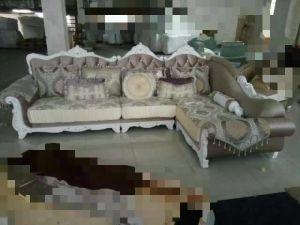 Royal Sofa, Fabric Sofa, Luxury Europe Sofa (A898) pictures & photos