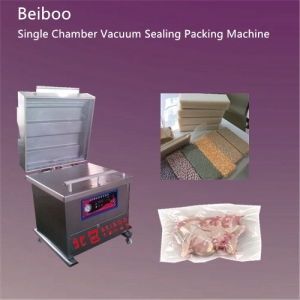 Floor Single Vauum Sealing Packing Machine RS600 pictures & photos