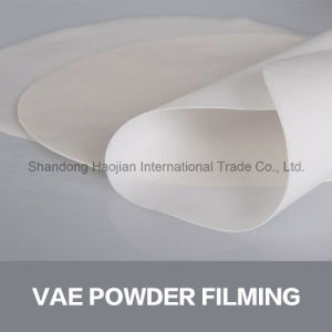 Fast Set Coating Additive Vae Rdp Polymer Powders pictures & photos