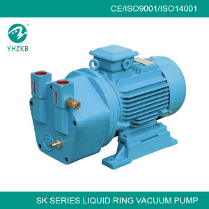 High Quality Single Stage Water Ring Vacuum Pump for Autoclave pictures & photos