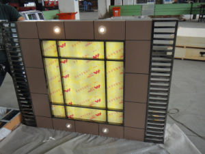 Elevators/ Lifts (TKL-JXW) pictures & photos