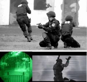 Policeman Infrared Video Endoscope with 5.0′′ LCD, 4-Way Articulation, 3m Testing Cable pictures & photos