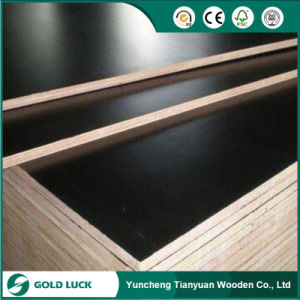 Film Faced Plywood/Phenolic Plywood/Formwork Plywood to Peru Market pictures & photos