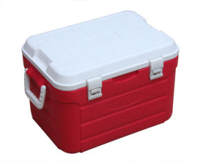 Cooler Box (CCC00010) Capacity: 30L pictures & photos