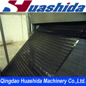 Biaxial Plastic Geo Grid Production Line Geogrid Extrusion Line pictures & photos