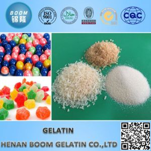Skin Gelatin for Food Additive pictures & photos