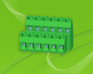 Euro Type PCB Screw Terminal Block Connector Factory pictures & photos