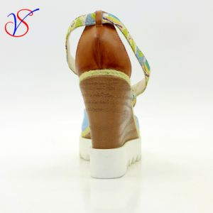 Sex Fashion High Heeled Women Lady Sandals Shoes for Socially Business Sv-Wf-019 pictures & photos