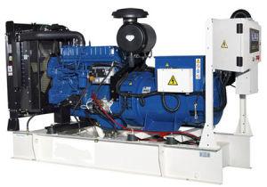 Perkins Series Diesel Generator Set (NPP250)