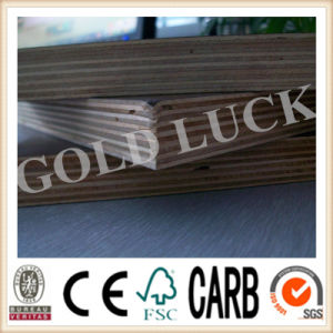 Qingdao Gold Luck Film Faced Bridge Plywood pictures & photos