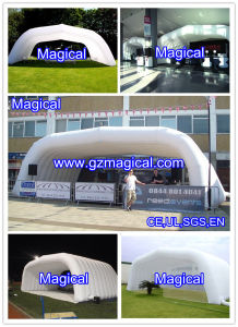 Inflatable Stadium/Sport Field (MIC-802) pictures & photos