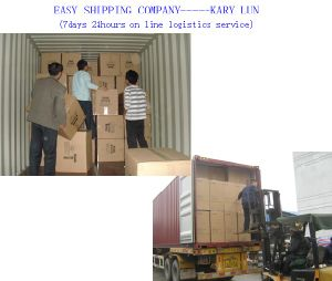 Consolidate Shipping Service Provide by Professional Shipping Company pictures & photos