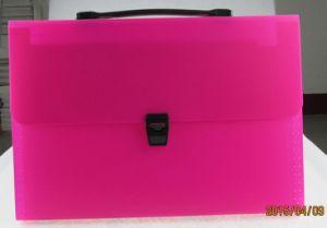 Expanding File/ Document Bag (E049) pictures & photos