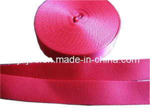 Factory High Quality Elastic Webbing / Garment Webbing pictures & photos