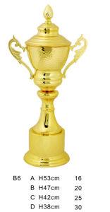 Metal Trophy B6 pictures & photos