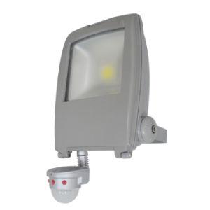 New PIR Sensor 100lm/W 70W Landscape COB LED Flood Lamp Light pictures & photos