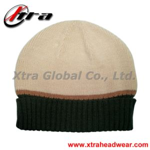 Fashion Beanie Hat (XT-W017) pictures & photos