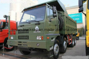 Sinotruck HOWO 8X4 6X4 4X2 Special Truck pictures & photos