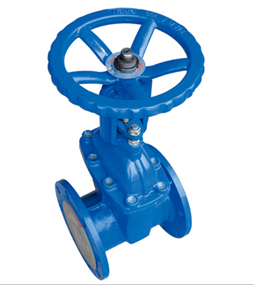 Flange Resilient-Seated Gate Valve pictures & photos