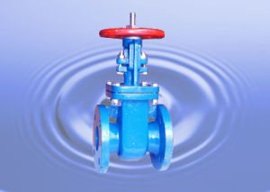 Rubber Sealing Gate Valve Z41X-10/16