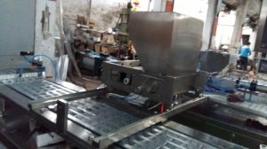 Dpp-250 Blister Packing Machine for Jam pictures & photos