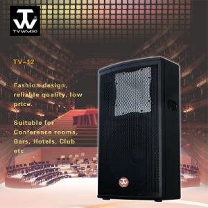 12inch Fahsionable Club Disco Stage Monitor 2way Loudspeaker