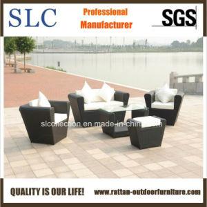 Wicker Sofa Set / Leisure Sofa/Patio Furniture (SC-B1004) pictures & photos