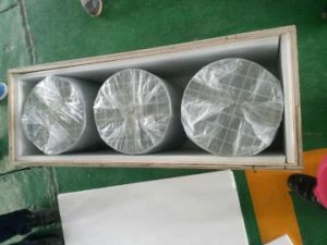Cordierite/Sic Diesel Particulate Filter DPF for Heavy Duty Vehicle pictures & photos