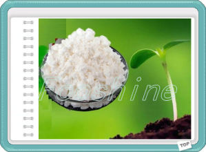 Chlormequat Chloride (CCC) 98%Tc, Plant Growth Regulator, Agrochemical pictures & photos