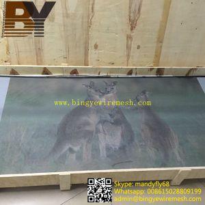 Powder Coated Security Door Screen pictures & photos