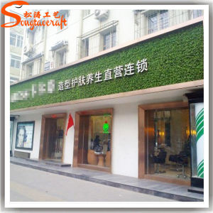 Guangzhou Wholesales Outdoor Artificial Plastic Plant Wall pictures & photos