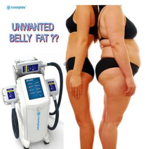 Perfect Effective Slimming Machine Fat Freezing Kryolipolyse Machine (SCV-102) pictures & photos
