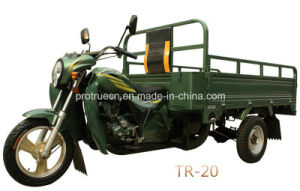 150cc Cargo Tricycle Popular for Africa Market (TR-20) pictures & photos