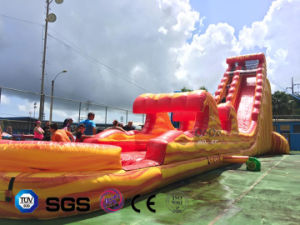Coco Water Design Inflatable Water Slide for Outdoor Playground LG8097 pictures & photos