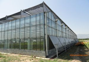 Factory Direc Sale Vegetable Growing Intelligent Glass Greenhouse pictures & photos