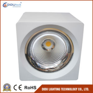 LED No Dimmable Ceiling Light Epistar COB with 20W