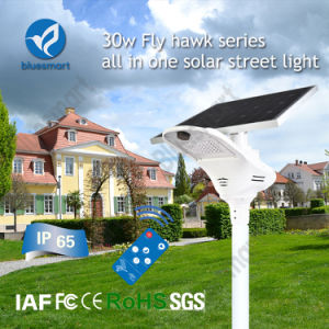 2017 Lasted Products Solar Road Light for Remote Area pictures & photos