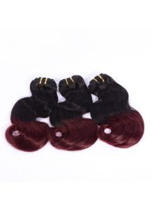 Virgin Hair Bundles Body Wave #1b/99j Ombre Color Human Hair Weft pictures & photos