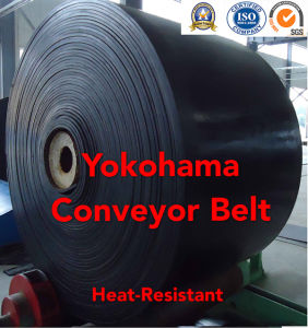 Heat-Resistant Conveyor Belt, Anti-Heat Conveyor Belt pictures & photos
