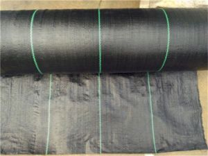 PP Woven Geotextile/ Garden Weed Control pictures & photos