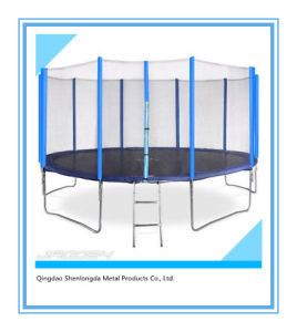 10FT Trampoline with Safety Enclosure for Kids pictures & photos
